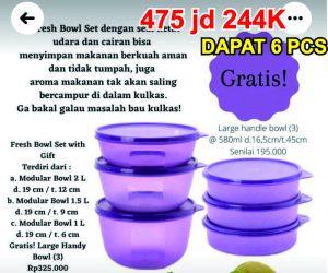 Fresh Bowl Set With Gift Mangkok Tupperware bulan Juli 2021